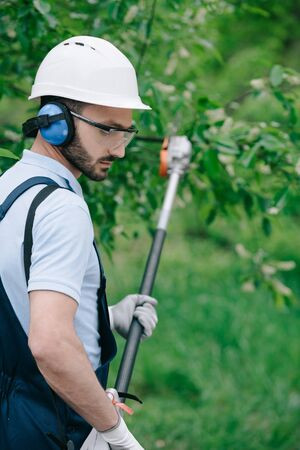 Selective focus of thoughtful gardener in helmet and hearing protectors trimming trees with telescopic pole saw in garden Banco de Imagens