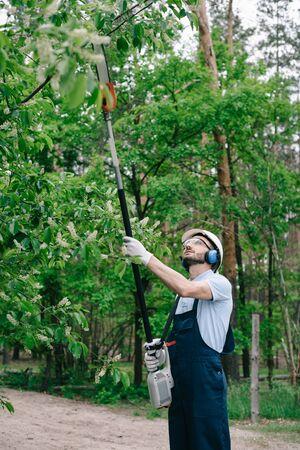 Gardener in overalls, helmet and hearing protectors trimming trees with telescopic pole saw in garden Banco de Imagens