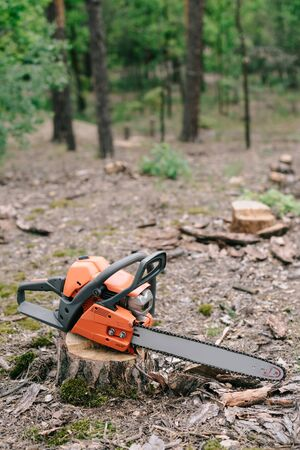 Electric, sharp, orange chainsaw on wood stump in forest Stock Photo