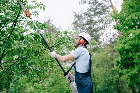 Gardener in helmet and overalls trimming trees with telescopic pole saw in garden Banco de Imagens