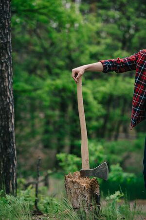 Cropped view of lumberer in checkered shirt standing with ax in forest 스톡 콘텐츠