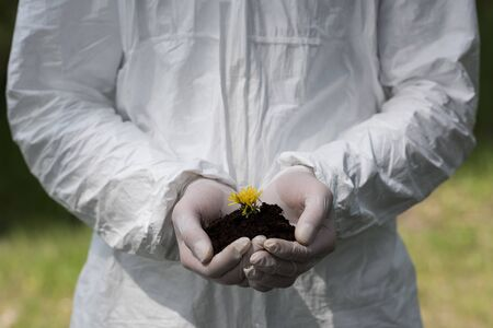 partial view of ecologist in latex gloves holding handful of soil with dandelion
