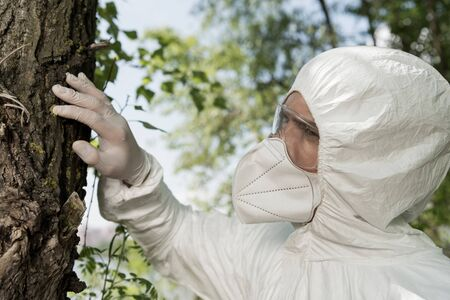 ecologist in latex glove, respirator and goggles touching tree bark in forest