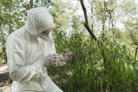 ecologist in protective costume, respirator and goggles holding plant in forest Stock Photo