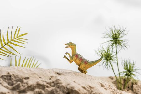 selective focus of toy dinosaur on sand dune with tropical leaves