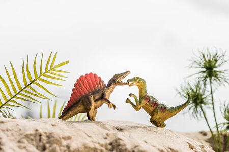 selective focus of toy dinosaurs roaring on sand dune with exotic leaves Stok Fotoğraf