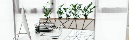 panoramic shot of office with table and flowerpot with plant