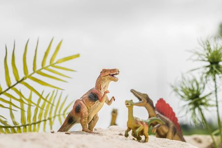 selective focus of toy dinosaurs on sand dune among tropical plants Фото со стока