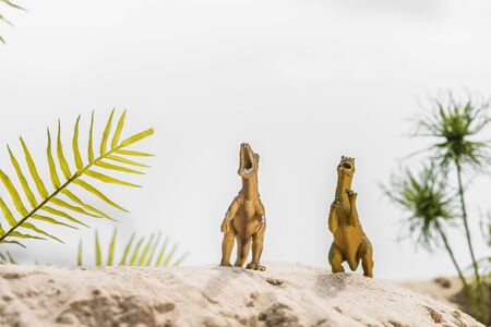 selective focus of toy dinosaurs roaring on sand dune with tropical leaves