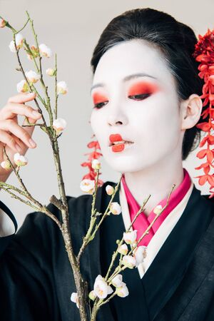tree branches and beautiful geisha with red and white makeup isolated on white Stock Photo