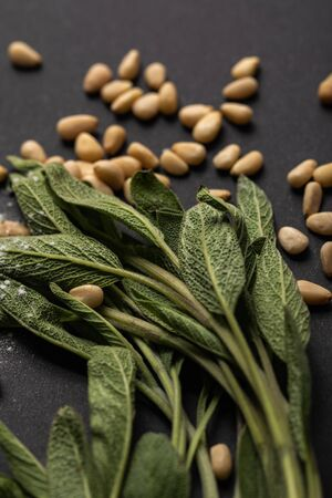 close up view of green sage and pine nuts on black background
