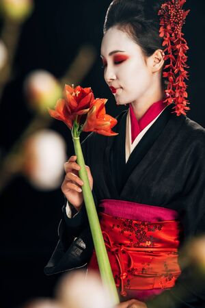 selective focus of geisha in black kimono with red flowers and sakura branches isolated on black