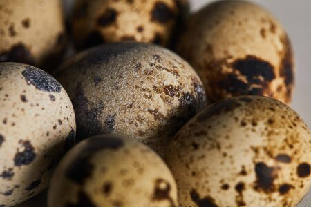 selective focus of few small quail eggs