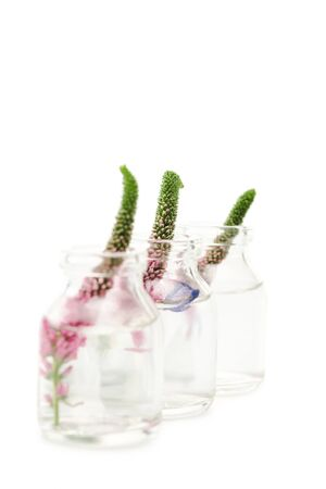 selective focus of glass bottles with pink veronica flowers isolated on white