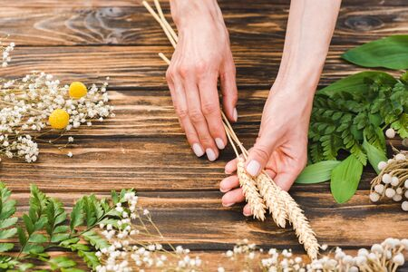 cropped view of woman holding wheat near plants on wooden table
