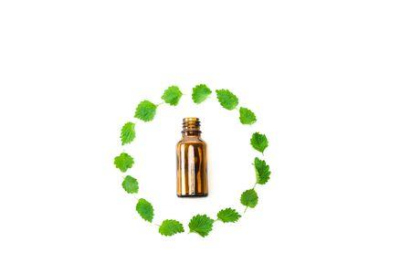 Draufsicht der Flasche in der Nähe des Rahmens aus grünen frischen Blättern isoliert auf weiß Standard-Bild