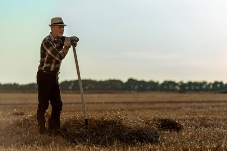 handsome self-employed man in straw hat holding rake in wheat field