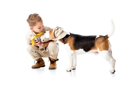 explorer child looking at cute beagle dog in hat on white