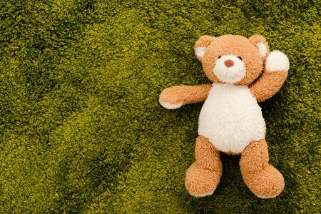 Top view of plush brown bear on green soft carpet Reklamní fotografie