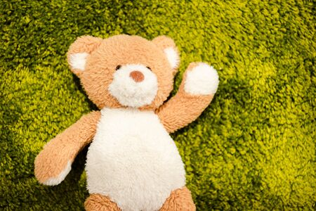 Top view of plush teddy bear on green soft carpet Stock Photo