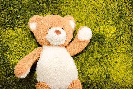 Top view of plush teddy bear on green soft carpet Reklamní fotografie