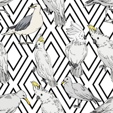 Vector Sky bird cockatoo in a wildlife. Wild freedom, bird with a flying wings. Black and white engraved ink art. Seamless background pattern. Fabric wallpaper print texture. 版權商用圖片
