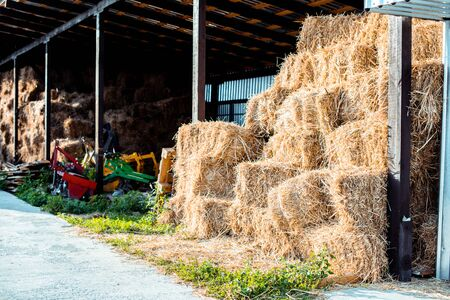 haystacks on green grass near building in country Stock fotó