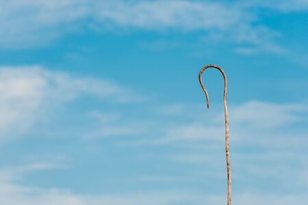 wooden cane against blue sky with white clouds and copy space