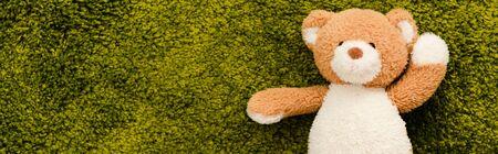 Panoramic shot of plush teddy bear on green soft carpet