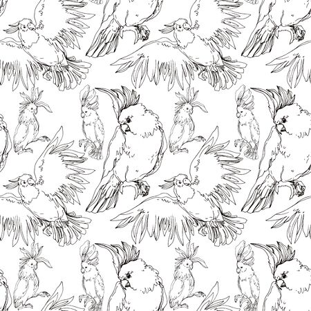 Vector Sky bird cockatoo in a wildlife isolated. Wild freedom, bird with a flying wings. Black and white engraved ink art. Seamless background pattern. Fabric wallpaper print texture.  イラスト・ベクター素材