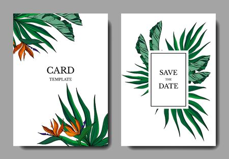 Vector Tropical floral botanical flowers. Engraved ink art. Wedding background card floral decorative border. Thank you, rsvp, invitation elegant card illustration graphic set banner. Illustration