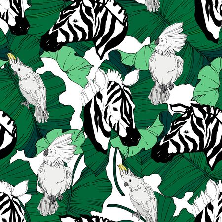 Vector Exotic zebra print wild animal isolated. Black and white engraved ink art. Seamless background pattern. Fabric wallpaper print texture. 向量圖像