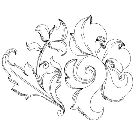 Vector Baroque monogram floral ornament. Baroque design isolated elements. Black and white engraved ink art. Isolated ornaments illustration element on white background. Ilustrace