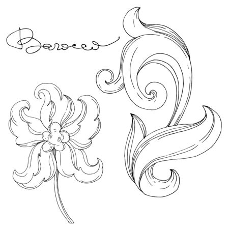 Vector Golden monogram floral ornament. Baroque design elements. Isolated ornament illustration element on white background. Black and white engraved ink art. Vektorgrafik