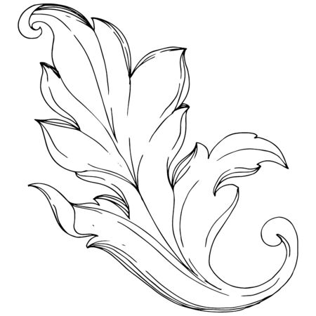 Vector Baroque monogram floral ornament. Baroque design isolated elements. Black and white engraved ink art. Isolated ornaments illustration element on white background. Illusztráció