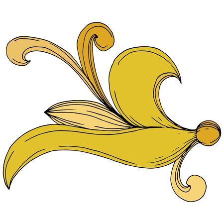 Vector Golden monogram floral ornament. Baroque design isolated elements. Black and white engraved ink art. Isolated monogram illustration element. Illusztráció