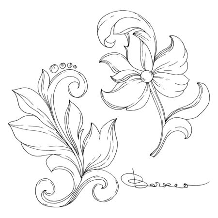 Vector Golden monogram floral ornament. Baroque design elements. Isolated ornament illustration element on white background. Black and white engraved ink art.