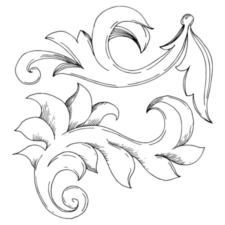 Vector Golden Monogram floral ornament. Baroque design elements. Black and white engraved ink art. Isolated ornaments illustration element on white background. Illustration