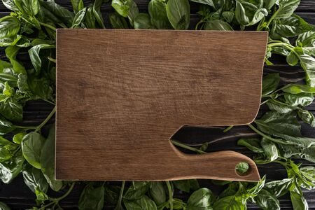 top view of wooden cutting board on leaves of basil 版權商用圖片