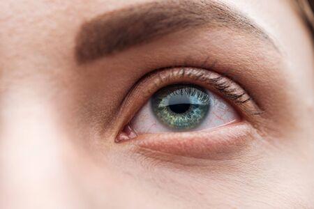 Nahaufnahme des grünen Auges der jungen Frau mit Wimpern und Augenbrauen