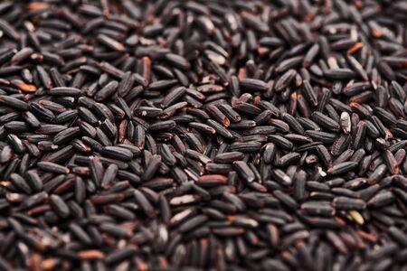 close up view of raw organic black rice