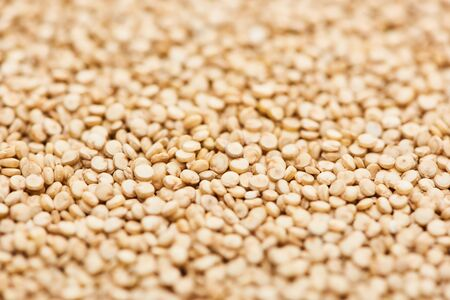 close up view of unprocessed white quinoa seeds