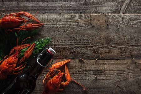 top view of red lobsters, dill and bottle with beer on wooden surface