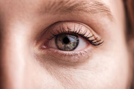 close up view of young woman grey eye with eyelashes and eyebrow looking at camera