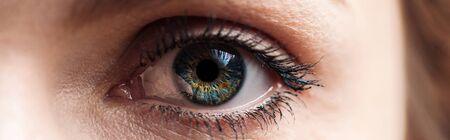close up view of human blue eye looking at camera, panoramic shot