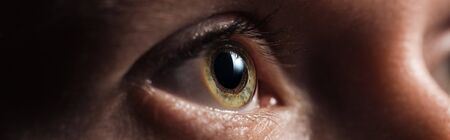 close up view of human green clear eye looking away in dark, panoramic shot