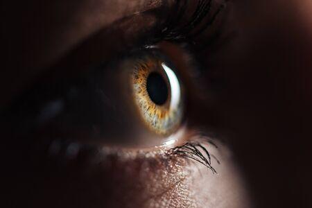Vista de cerca del ojo humano con pestañas y cejas mirando hacia otro lado en la oscuridad
