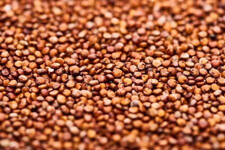 close up view of raw organic red quinoa seeds