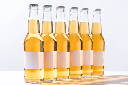beer bottles with blank white labels isolated on grey