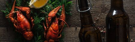 panoramic shot of red lobsters, lemon slice, dill and glass bottles with beer on wooden surface